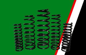 """EFS 2"""" Front or Rear Coil Spring for Land Rover Defender 110 from 1992, Discovery II 1999-2005, Range Rover Classic 1971-1998"""
